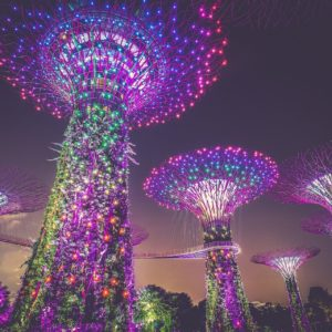 Künstliche Bäume aus Licht und Kunst in Singapur